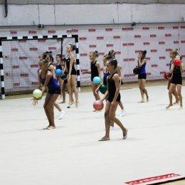 УТС по художественной гимнастике