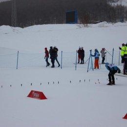 Областные соревнования по лыжным гонкам на призы Анны Ермаковой