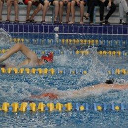 Чемпионат области 2016 года по плаванию