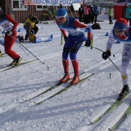Чемпионат и первенство области по лыжным гонкам
