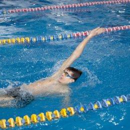 Новогодние соревнования по плаванию
