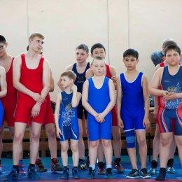 Турнир по вольной борьбе памяти П.М. Алборова