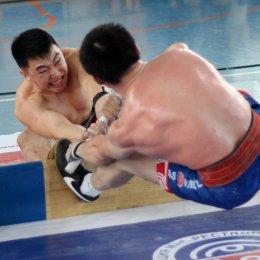Чемпионат ДФО по мас-рестлингу