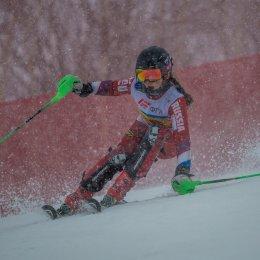 Чемпионат и первенство России по горнолыжному спорту