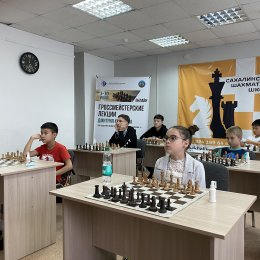 Онлайн-занятия юных сахалинских шахматистов с международным гроссмейстером Дмитрием Кряквиным (фотографии Константина Сек)