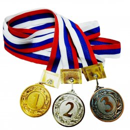 Борцы из Анивы завоевали три медали всероссийских соревнований