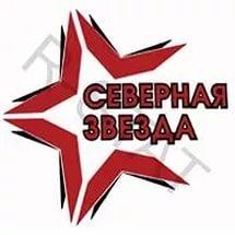 «Северная звезда» - в финале VI Всероссийского фестиваля Ночной Хоккейной Лиги