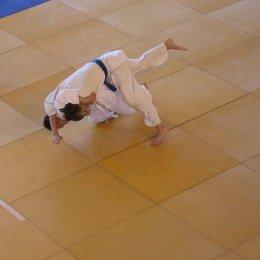 Большинство медалей первенства области завоевали борцы из Южно-Сахалинска
