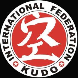 Сахалинские кудоисты завоевали две медали первенства ДФО