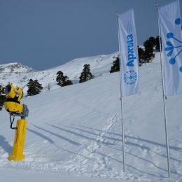 В скоростном спуске островные горнолыжники остались без наград