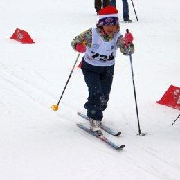 Юных динамовцев ждут на лыжне