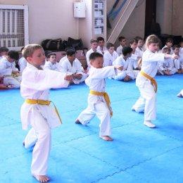 Именитые сенсеи провели мастер-классы для сахалинских каратистов