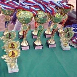 Главные события августа для воспитанников ГБУ «СШ самбо и дзюдо»
