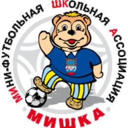 Сахалинские команды вышли на старт дальневосточного этапа проекта «Мини-футбол в школу»