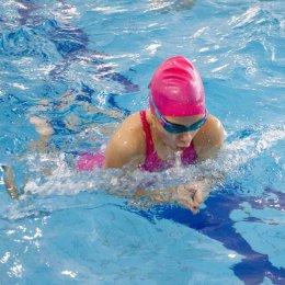 Состязания по брассу прошли в «Дельфине»