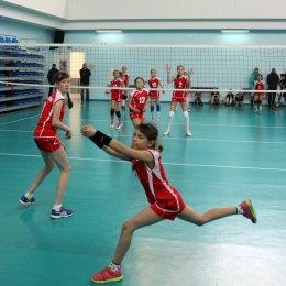 В первенстве области по волейболу среди мальчиков и девочек 2006-2007 г.р. принимают участие 13 команд
