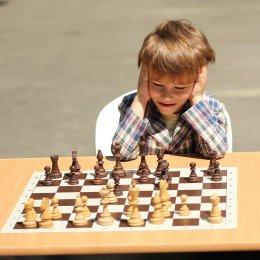 Будут ли сахалинские шахматисты участвовать в Олимпиаде?
