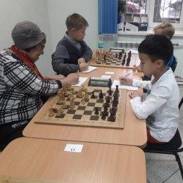 В чемпионате области по шахматам воцарилось троевластие