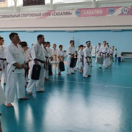 В спортивном комплексе «СШ по волейболу» прошли УТС островных каратистов