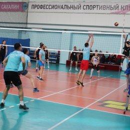 Сотрудники спортивных школ состязаются в волейболе