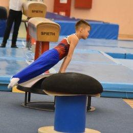 Сахалинские гимнасты отличились в Саренске