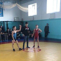 Сахалинские борцы завоевали 18 медалей открытого первенства ЕАО