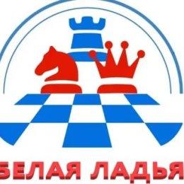 Команда лицея № 2 заняла 57-е место в финале «Белой ладьи»