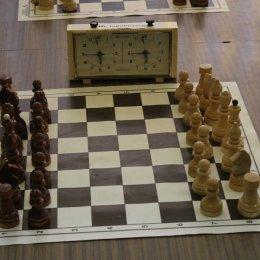 Победители первенства Углегорского района по шахматам добились 100-процентного результата