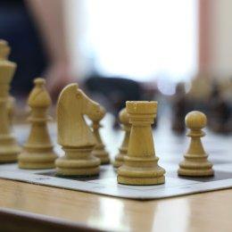 Сахалинские шахматисты успешно выступают на фестивале «Город у моря»