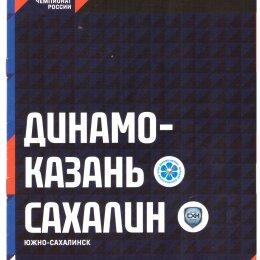 """Динамо-Казань"" - ""Сахалин"""