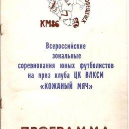 """Зональный турнир """"Кожаного мяча"""" в Благовещенске."""