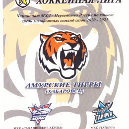 """Амурские Тигры"" (Хабаровск) - ""Сахалинские Акулы"" (Южно-Сахалинск). Вид 2"